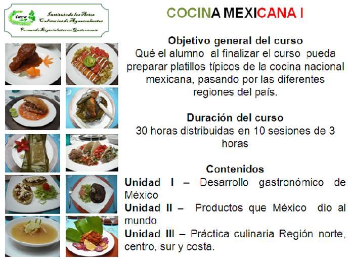 Cursos de cocina nacional instituto de las artes for Programa de cocina de la 1