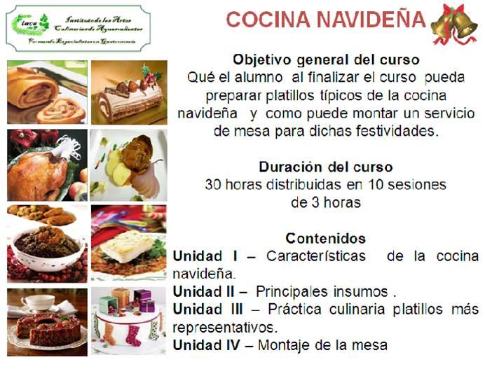Cursos de cocina de especialidad instituto de las artes for Curso cocina gratis