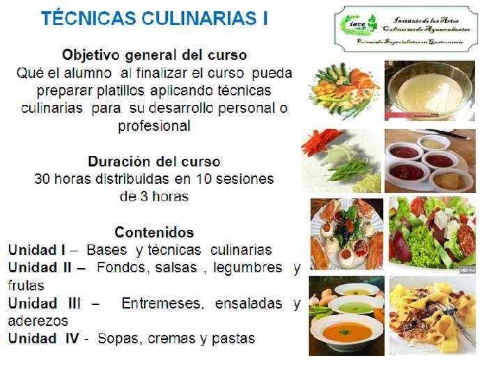Cursos de t cnicas culinarias instituto de las artes for Tecnicas culinarias de la cocina francesa
